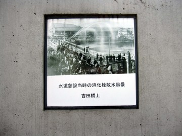 4_2010113
